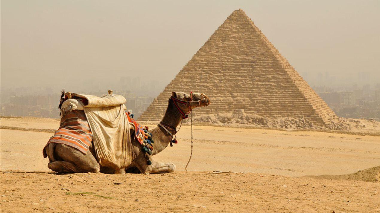 esencias de egipto